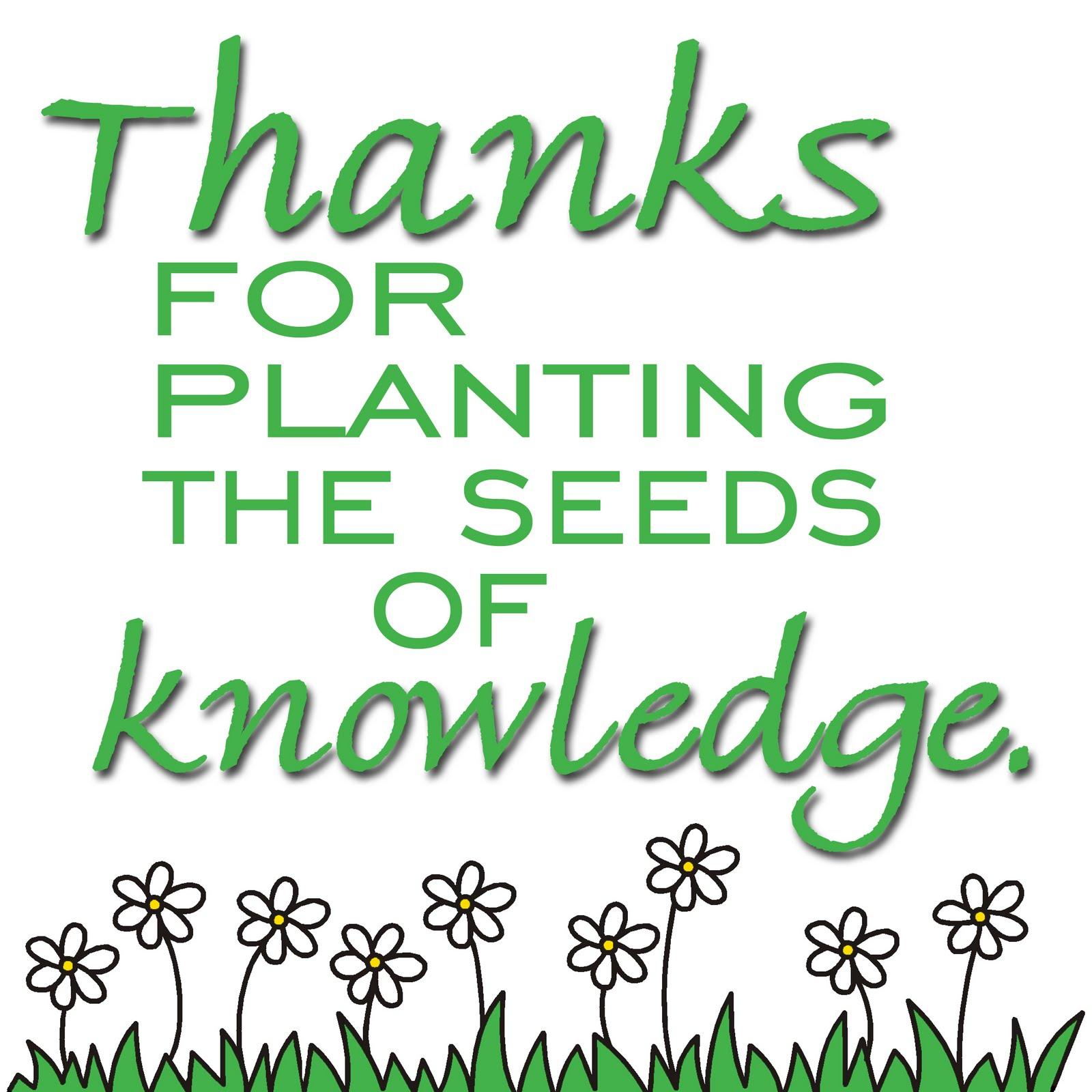 Teachers Plant Seeds of Knowledge – Jeddah Teachers